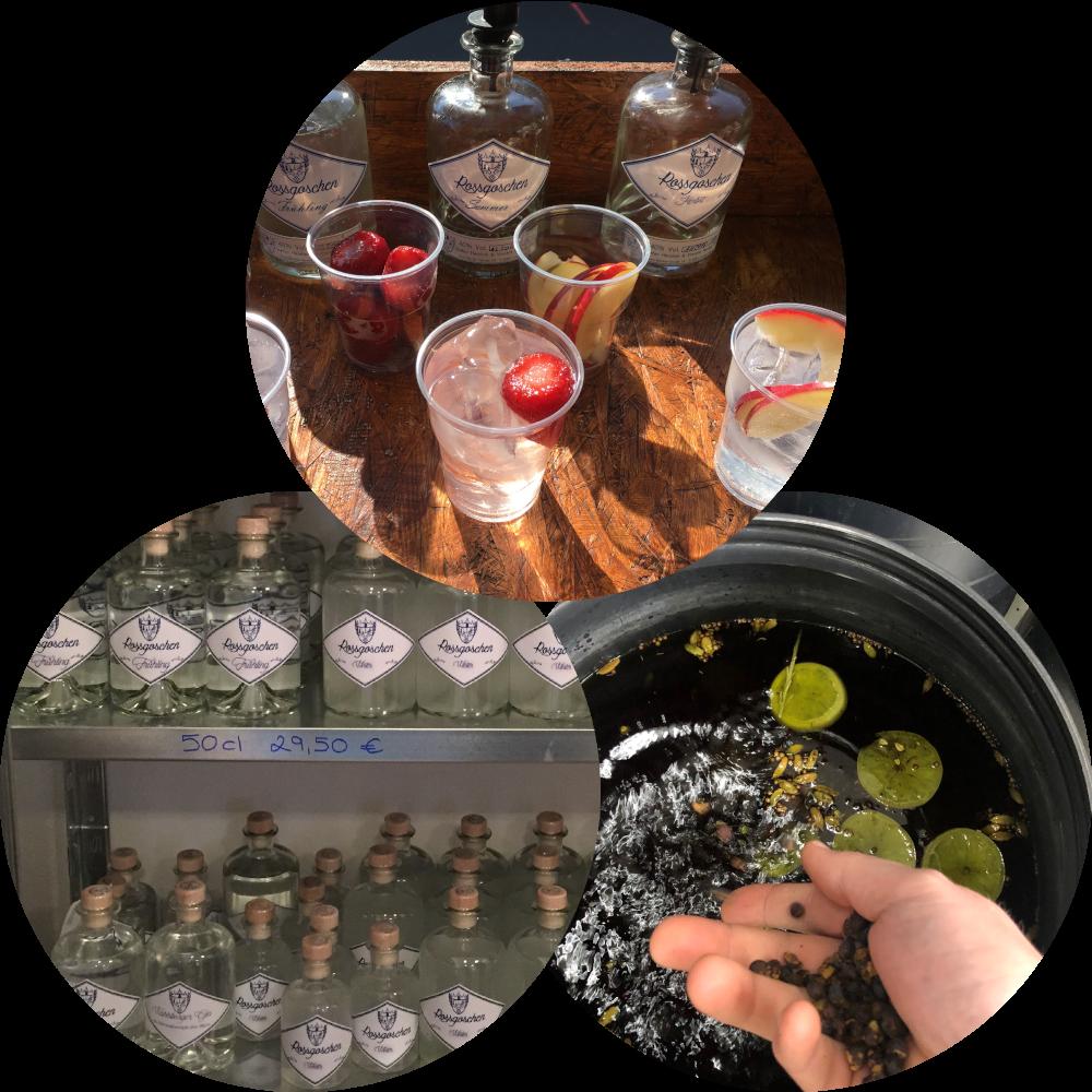 Rossgoschen Destille Entstehung 4